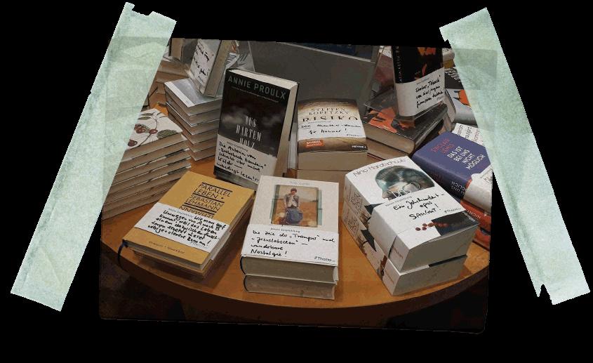 Beitragsbild Artikel - Bluessommer jetzt auch in der Thalia Buchhandlung erhältlich