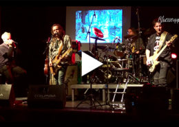 "Beitragsbild Video - Kay Lutter & Monomann im Columbia Theater in Berlin - Titel ""Musikerlied"""